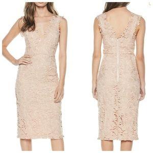 Bardot Dresses - NWT Bardot Valeria Sleeveless Sheath Dress Lace